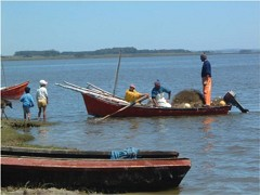 Fishermen at Laguna de Rocha