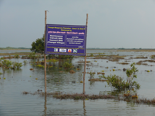 biodiversity and conservation on pulicat lake Pulicat lake is a well-known lagoon close to chennai and also a legally notified   sustained struggle against pollution as an attempt to conserve biodiversity,.