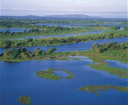 Aerial photo of a part of the Pantanal Wetland