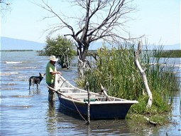 Fisherman at Lake Chapala