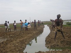 Channel digging in Edamani, India