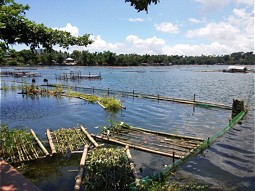 Green Filter - floating platforms in the Sampaloc Lake (Philippines).