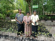 Demonstration Nursery in Pathamulla
