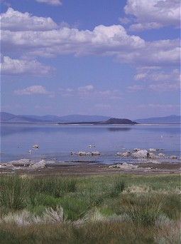 Shoreline of Mono Lake