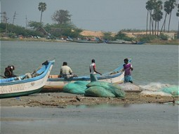 Fishermen at the Pulicat Lagoon