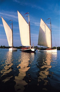 Sailing Boats at the Broads in England