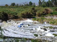 Highly polluted Santiago River