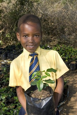 "Project ""Trees for Life"", South Africa"