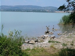 Shore line of Lake Balaton