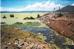 Sewage near the City Puno