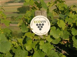 ECOVIN implements sustainability in the vineyard.