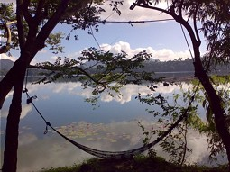 Idyll impression at Lake Sampaloc