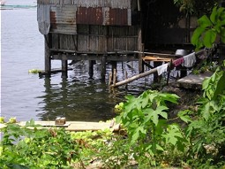 House at the shore line of Lake Sampaloc