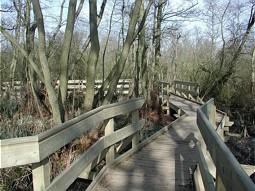 Barton Board Walk