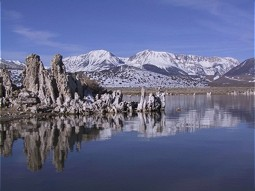 Tufa at and in the Mono Lake