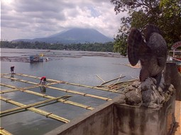 Fish cages in Lake Sampaloc