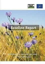 Baseline Report