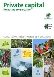 Private capital for nature conservation: Could impact investments be a solution?