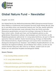 GNF-Newsletter 2/2019