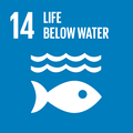 Goal 14: Conserve and sustainably use the oceans, seas and marine resources for sustainable development
