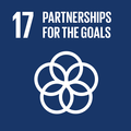 Goal 17: Strengthen implementation capacity and revitalize the global partnership for sustainable development