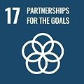 Goal 17: Strengthen the means of implementation and revitalize the global partnership for sustainable development