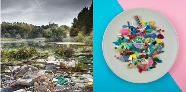 Micro Plastics – from the lake directly to the plate?